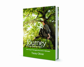 The Journey from Here to There Book